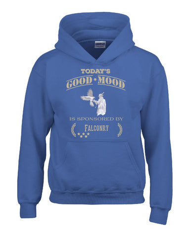 Todays Good Mood Is Sponsored By Falconry - Hoodie S-Royal- Cool Jerseys - 1