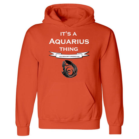 It's a Aquarius Thing- You Wouldnt Understand- Funny - Hoodie