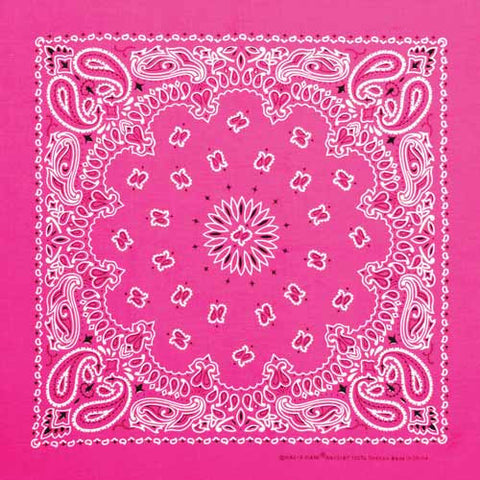 Bandana Whole (If you need one to match your pony?)