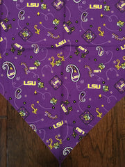 College & Professional Bandannas (Football, Baseball, sports)