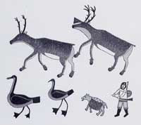We Follow the Caribou