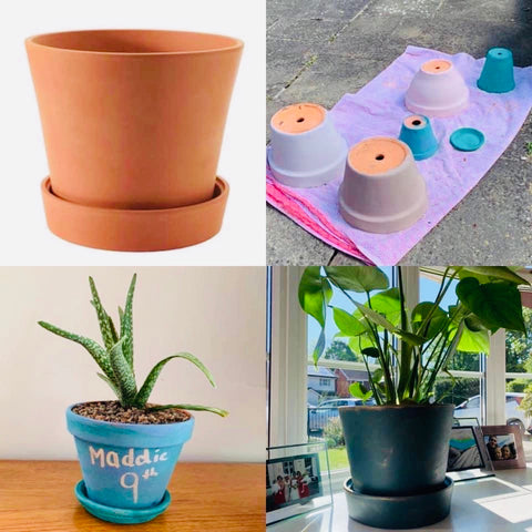 Plant pot painting ideas