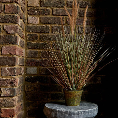 Textured Wall contrasting with faux grasses in a plant pot