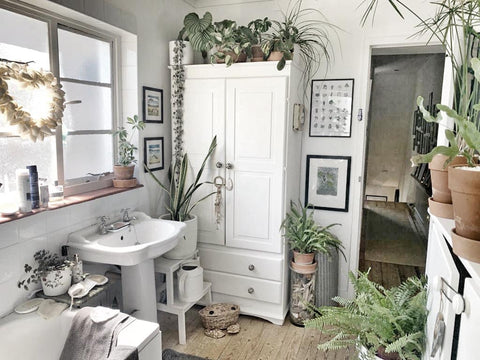 All white bathroom with lots of plants