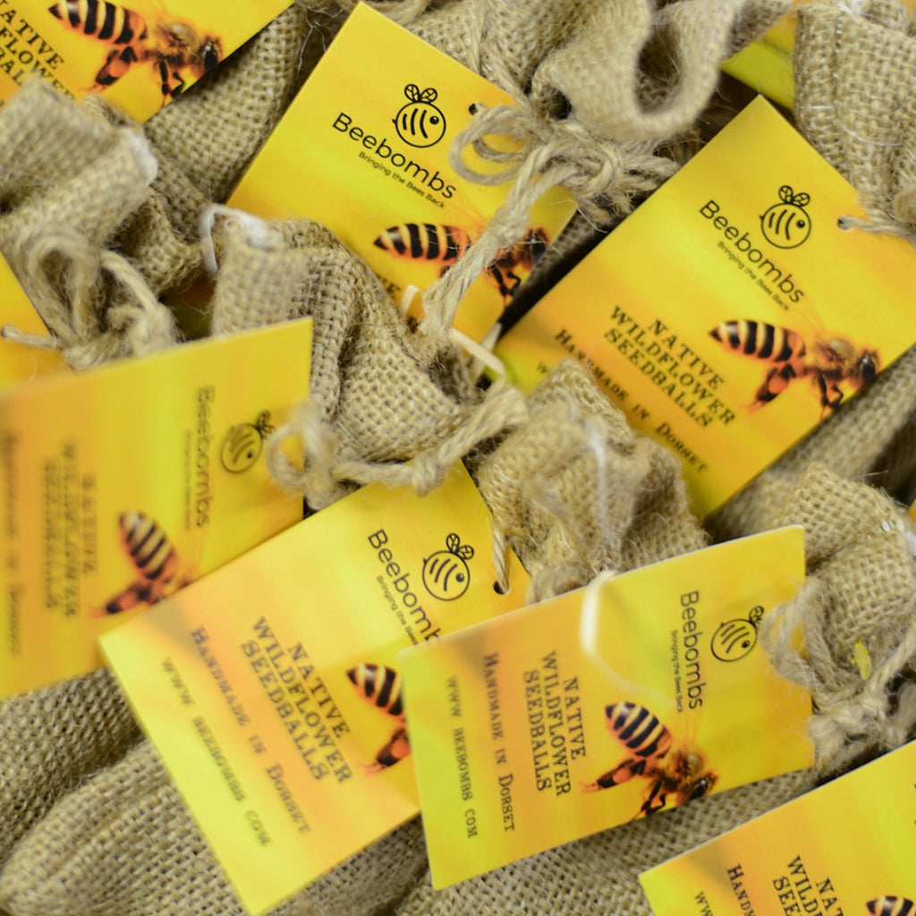 Beebombs - wild flower seeds pack of 5