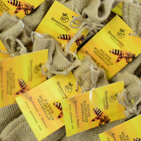 Beebombs - Pack of 5 wild flower seeds