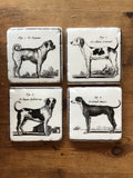 Canine Coasters Set of 4 - La Di Da Interiors