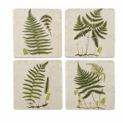 Fern Botanical Coasters