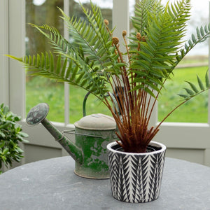 Large Potted Faux Fern
