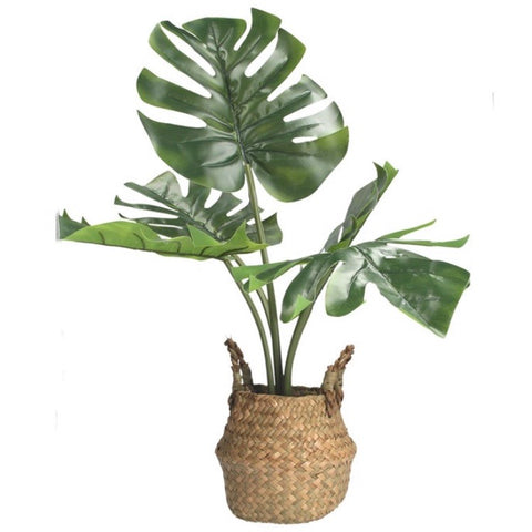 Faux Monstera Plant in Rattan Basket