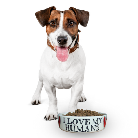 I love my humans - Large Pet Bowl