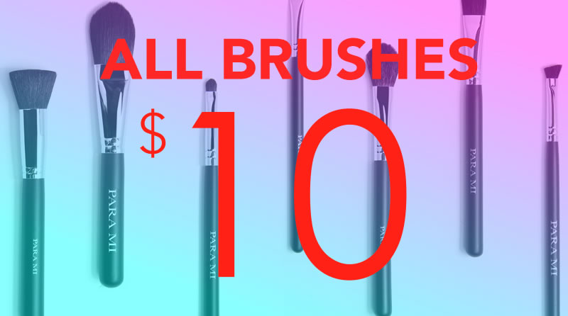 Black Friday Brushes for $10