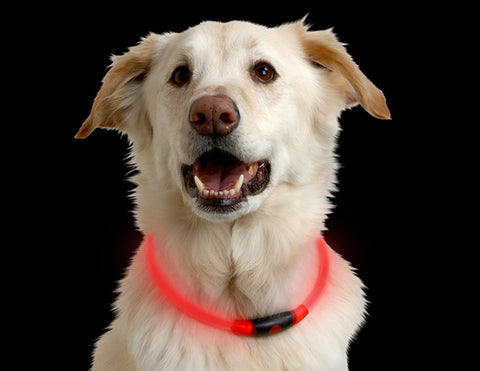 Nite Ize NiteHowl LED Dog Safety Necklace Collar
