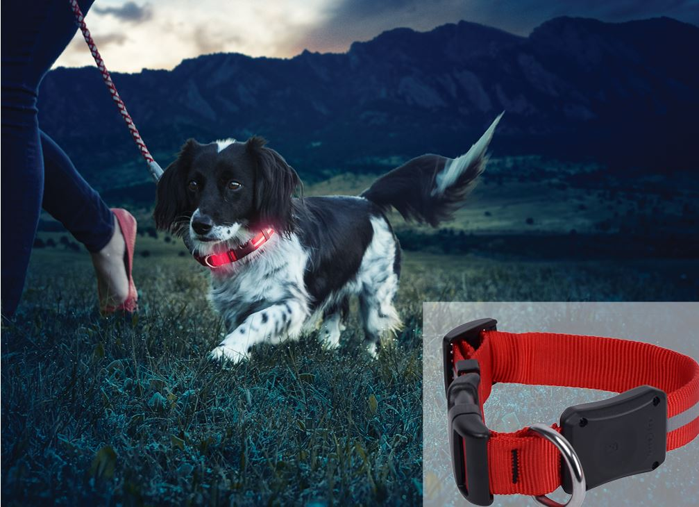 Nite Ize Nite Dawg II LED Red Collar
