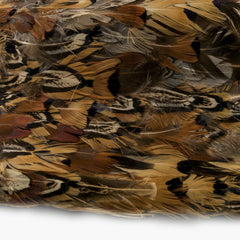 Early Pheasant Feather Hat