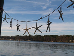 Starfish Garland, Large Stars