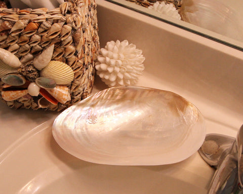 RIVER CLAM DISH 5-6""