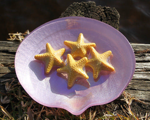 Starfish Shaped Soap Set