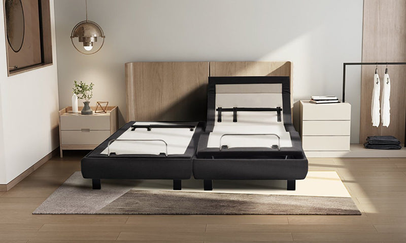 Adjustable Beds - S955 Adjustable Bed With Pillow Tilit And Lumbar