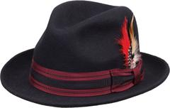 Fedora with feather