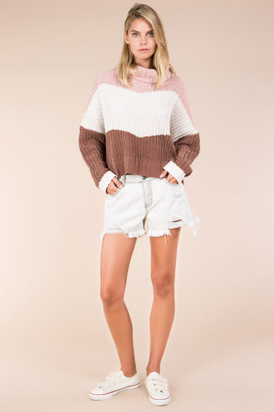 Color block rib textured turtle neck sweater