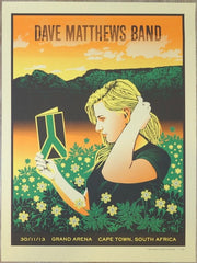 2013 Dave Matthews Band - South Africa I Silkscreen Concert Poster by Methane
