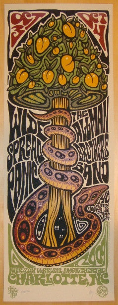 2009 Widespread Panic & Allman Bros - Charlotte Poster by Wood