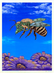 2007 Bee - Silkscreen Art Print by Emek
