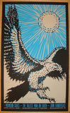 2009 The Tallest Man on Earth - Concert Poster by Todd Slater