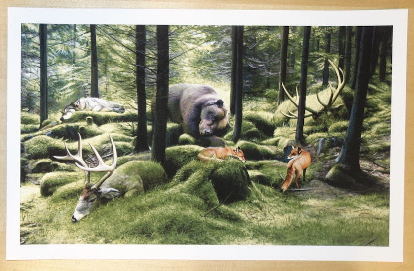 2014 Sleeping Woods - Giclee Fine Art Print by Josh Keyes