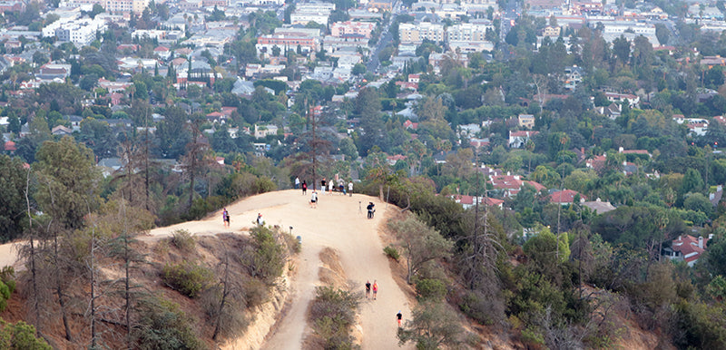view of Observatory Loop Trail in Griffith Park Los Angeles