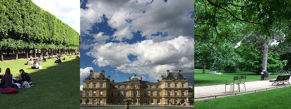 images of Luxembourg Palace gardens in Paris