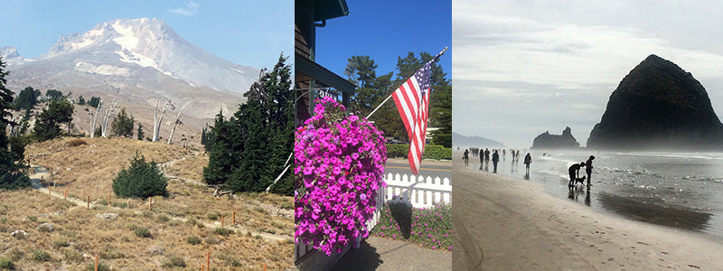views of Mt St. Helens and Cannon Beach in Oregon