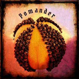 Pomander, a Holiday Spice and Clove Eau de Parfum