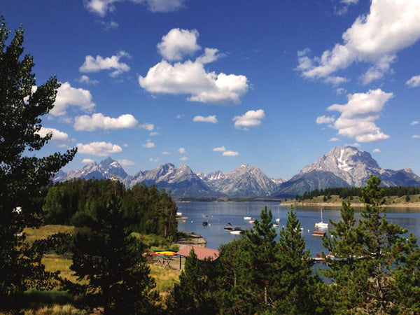 Where to camp in Grand Teton National Park