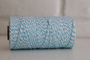 Divine Twine™ Striped Aqua Cotton Twine for Crafts, Scrapbooks and Packaging