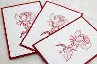 Red Rose All Occasion Floral Stationery Note Card Set, Feminine Note Cards for Her