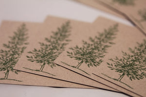 Evergreen Tree All Occasion Note Card Set, Christmas Thank You Cards, Masculine Stationery