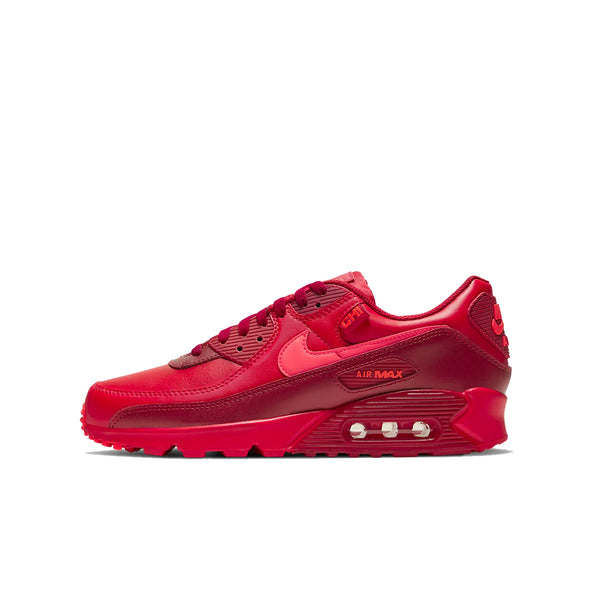 NIKE AIR MAX 90 CITY SPECIAL CHICAGO