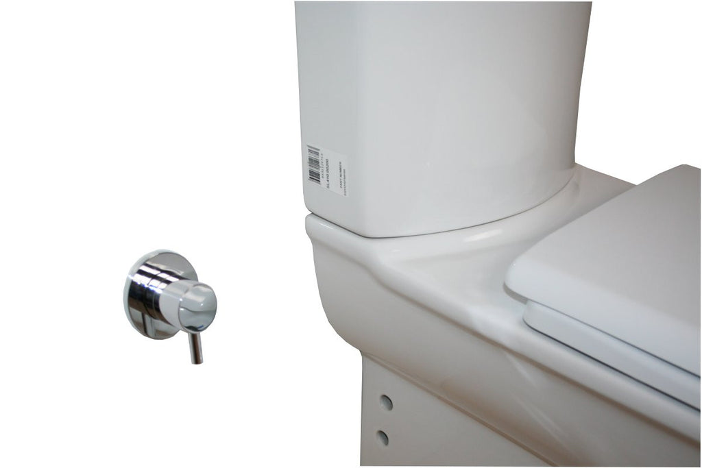 What are Tap options for Combined Bidet Toilet?