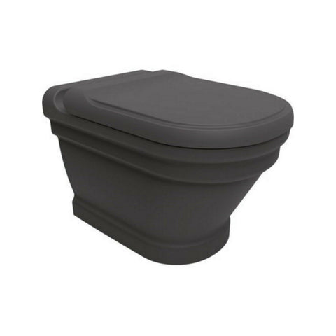 Efes Antique Anthracite Wall Hung Combined Bidet Toilet With Soft Close Seat