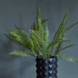 BOSTON FERN SPRAY