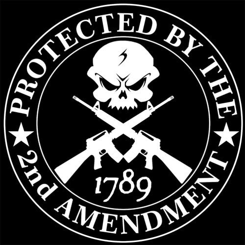 Second Amendment Skull with R-15 Decal
