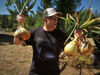 Giant Onions grow with WOW Super Starter Paks