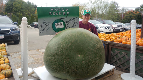 470.50 Connolly 2020 World Record Bushel Gourd