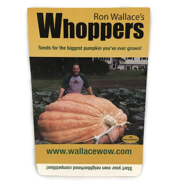 Wallace's Whoppers giant pumpkin seeds