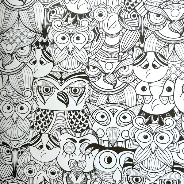 Adult Coloring Book - Everyone Loves Coloring Birds