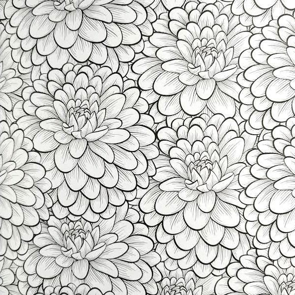 All Deals - Adult Coloring Book - Everyone Loves Coloring Flowers