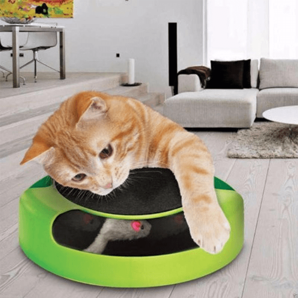 Catch-the-Mouse Motion Cat Toy