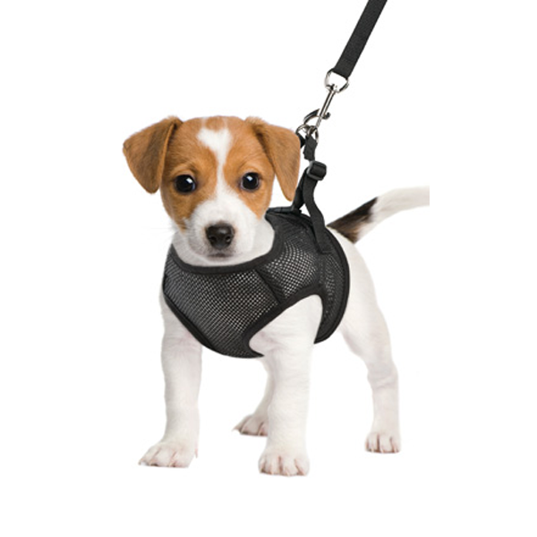 Magnetic Retractable Pet Harness